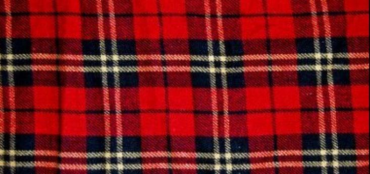 Highland games op Landgoed de Biestheuvel