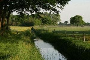 Omgeving Landgoed de Biestheuvel