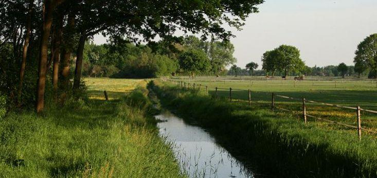 Landelijke omgeving op Landgoed de Biestheuvel