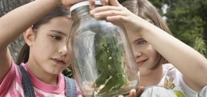 Super accommodatie voor gezinnen met jonge kinderen op Landgoed de Biestheuvel