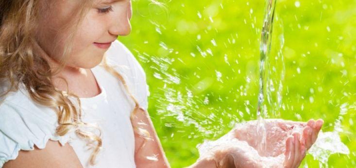 Vakantieboerderij op Landgoed de Biestheuvel ideaal voor kinderen.