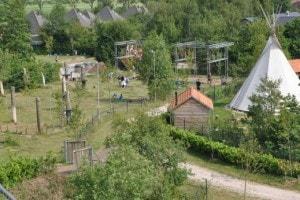 Uitzicht toren op Landgoed de Biestheuvel
