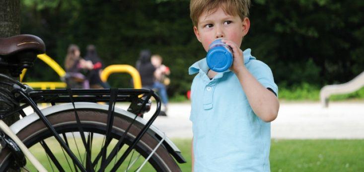 Op Landgoed de Biestheuvel spelen uw kinderen veilig op een groot speelveld