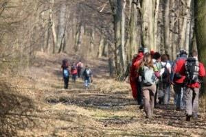 Teamopdrachten Landgoed de Biestheuvel