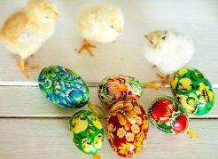 Easter op Landgoed de Biestheuvel