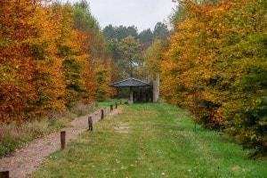 Herfst op Landgoed de Biestheuvel
