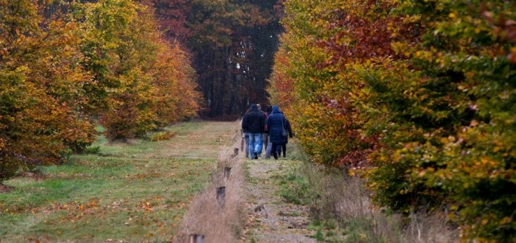 Wandelen bij Landgoed de Biestheuvel