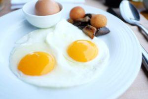 Ontbijten bij Landgoed de Biestheuvel
