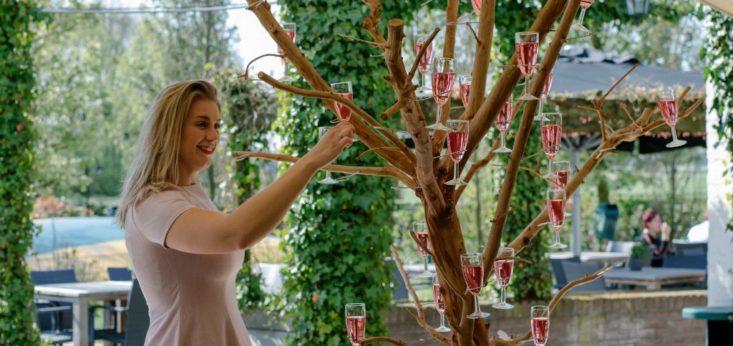 Champagneboom op Landgoed de Biestheuvel